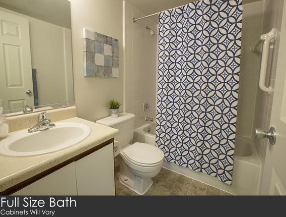 Aspen-20chase-20bathroom-20copy