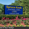 Spruce Knob Photo Thumbnail
