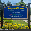 Aspen Chase Photo Thumbnail
