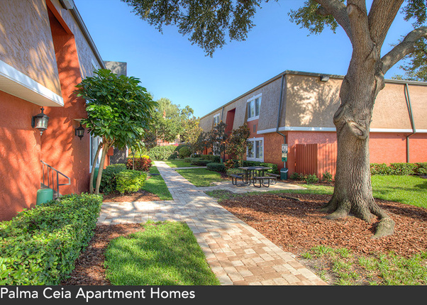 palma ceia studio 2 bed apts in tampa pool included mckinley