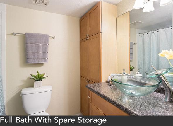 Sp-20web-20bathroom