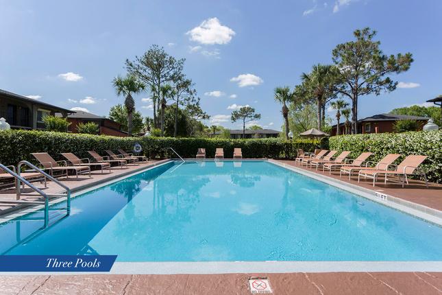 Iwp-pool