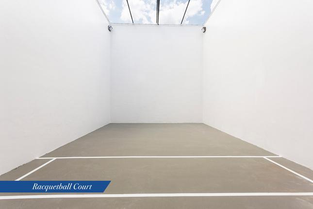 Porto-racquet