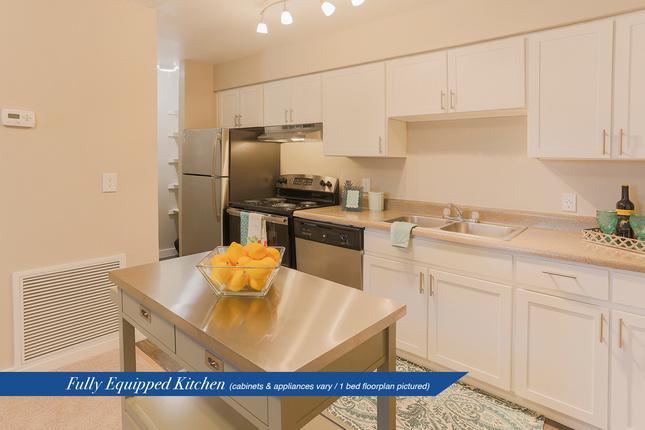 Serena-kitchen1