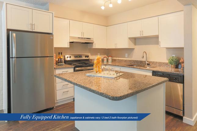 Serena-kitchen2