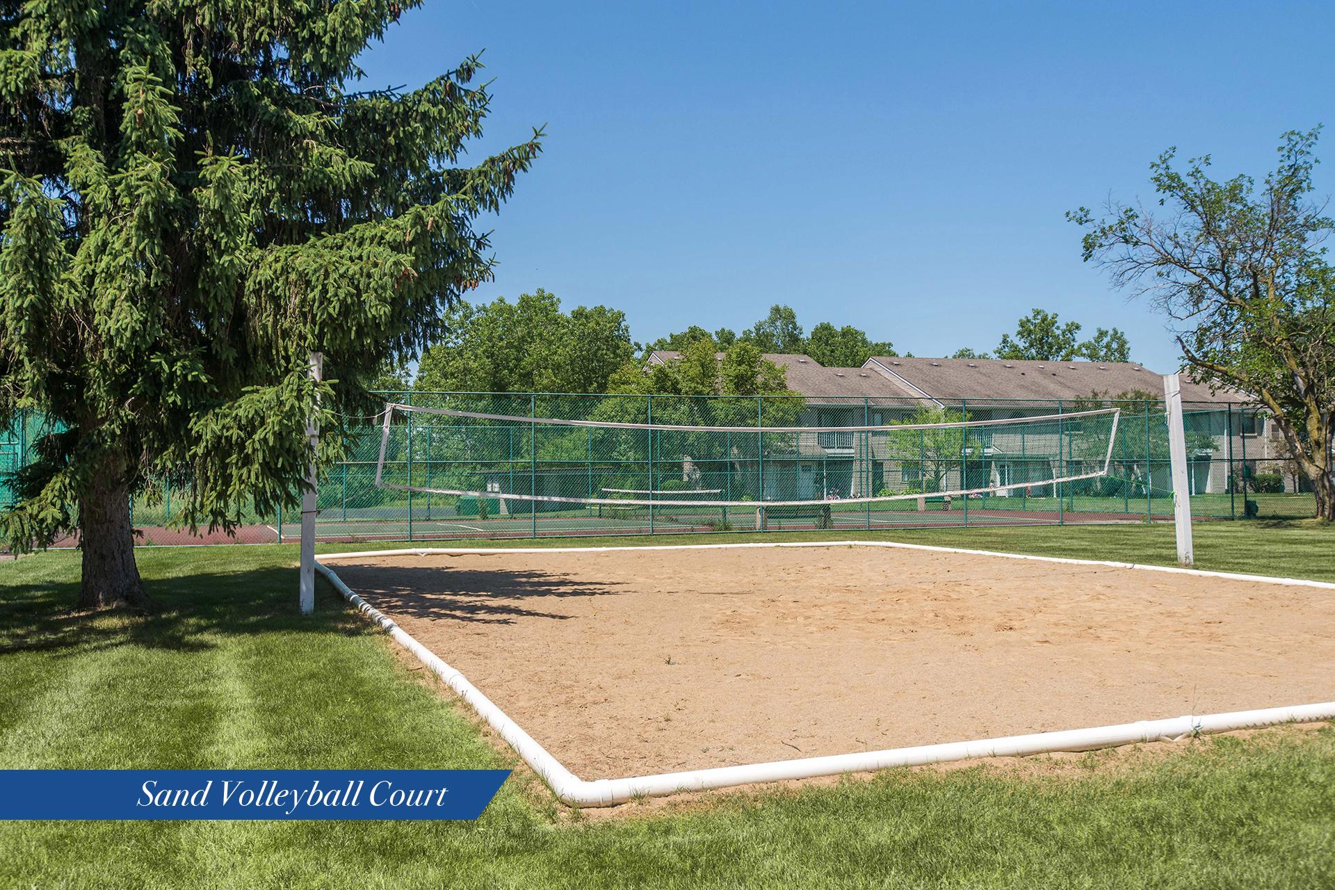 Rt-volleyball
