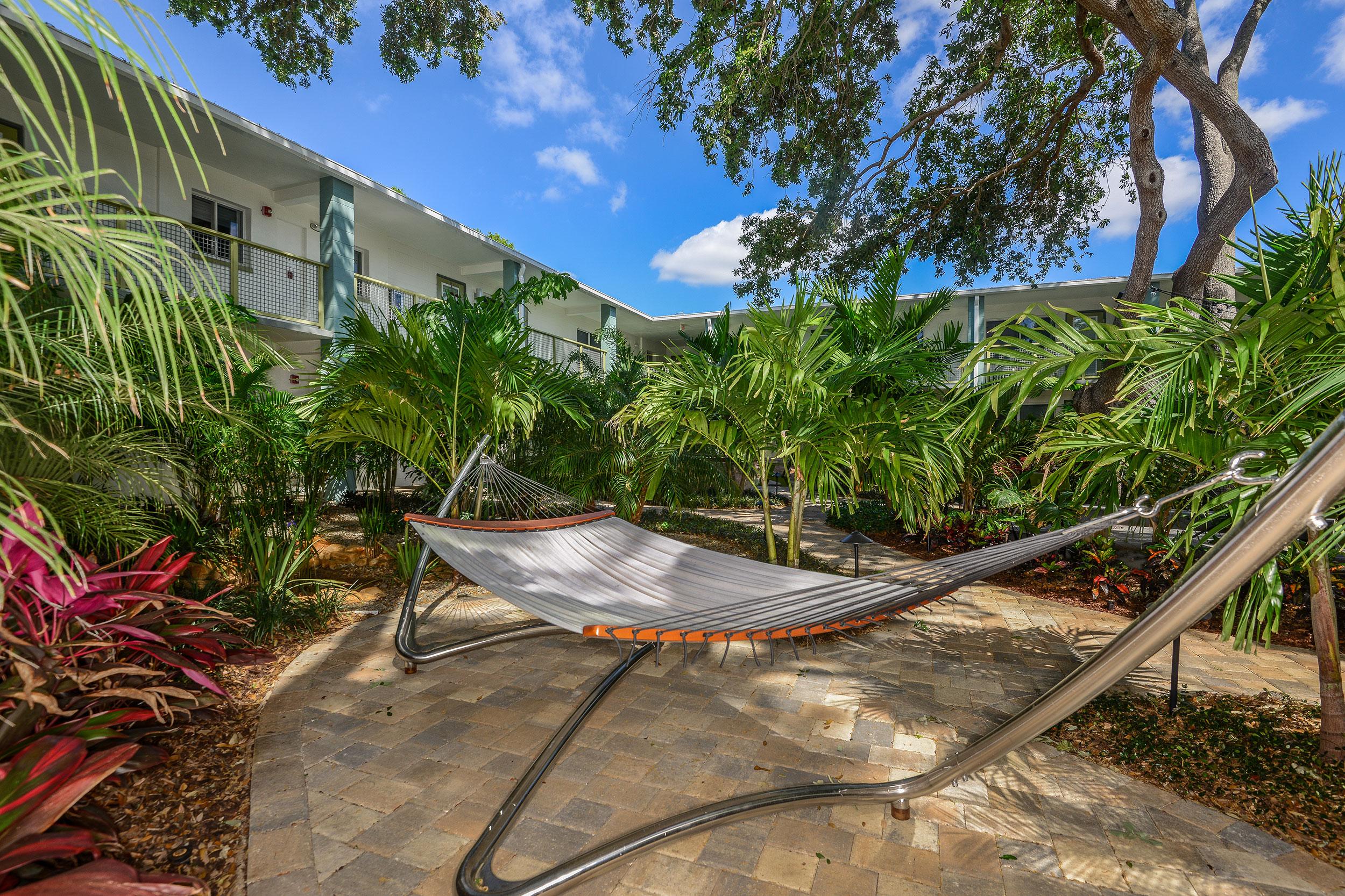Bsf-amen-hammock