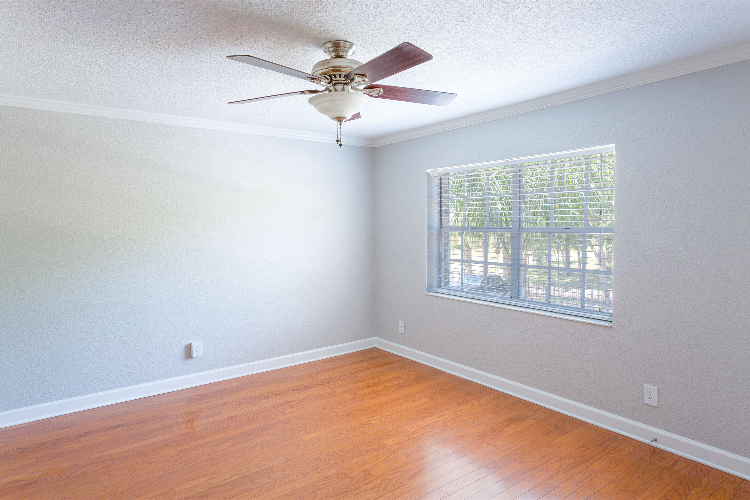 Harp-living-room