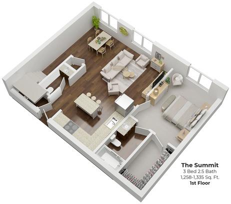 Summit1-3d-ssv