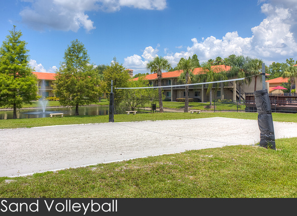 Studio-20parc-20volleyball-202