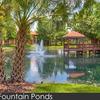 Studio Parc Apartment Homes Photo Thumbnail